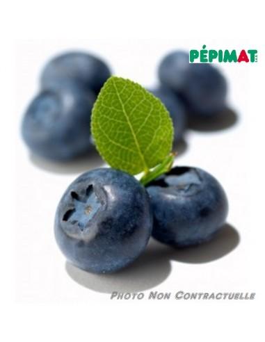 Myrtille Bluecrop - Pepimat