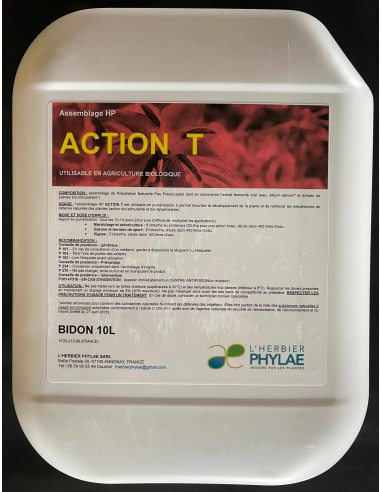 Action T