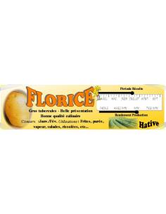 Florice