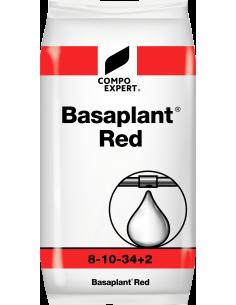 Engrais Soluble fraises - Basaplant Red