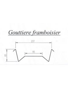 Gouttière Framboisier